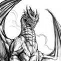 --Dragon--