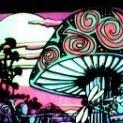 mushroomjoe
