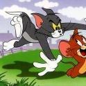 Katz-und-Maus