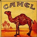 oldcamel
