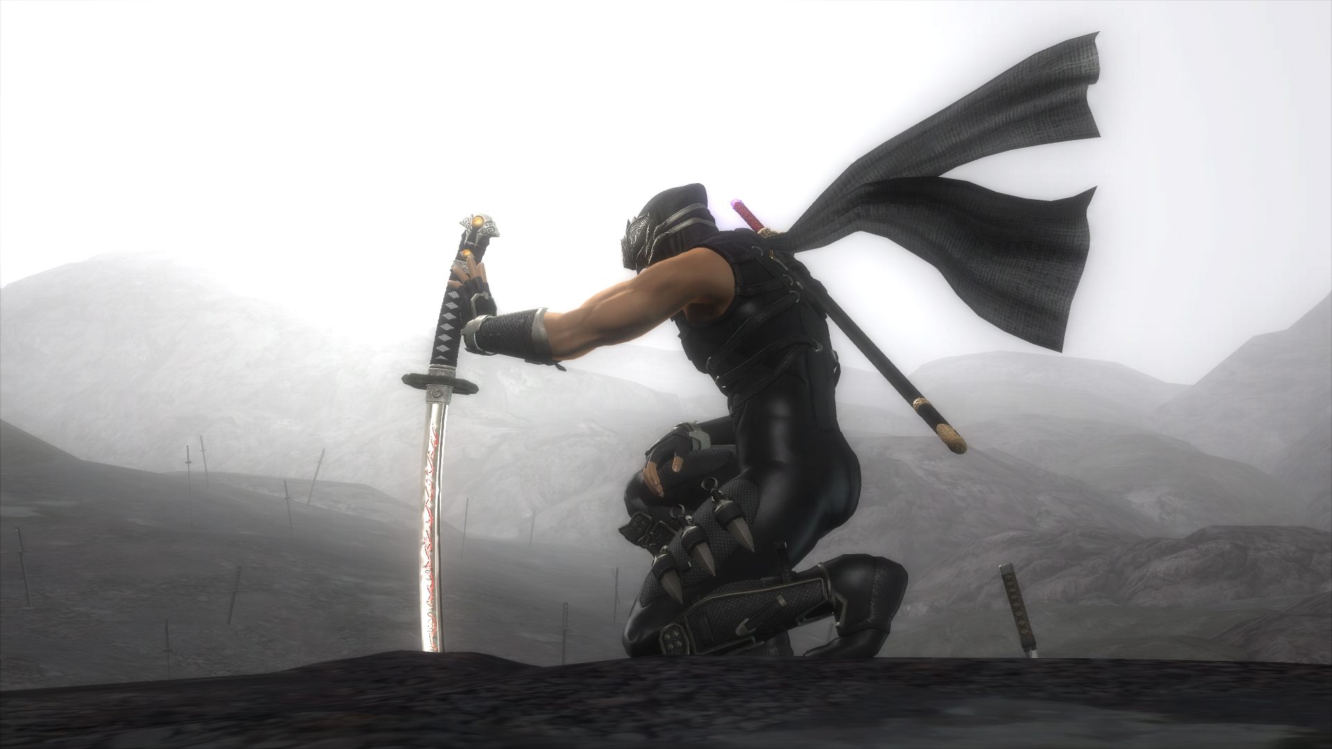 Team Ninja: ?Wir waren mit Ninja Gaiden 2 nicht zufrieden?