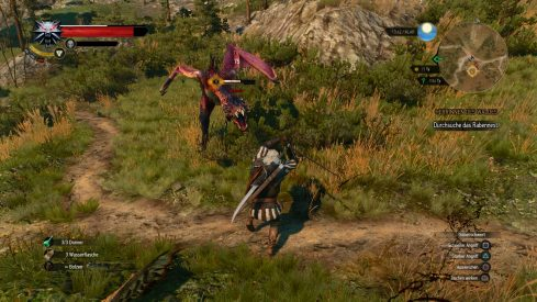 The Witcher 3_ Wild Hunt_20150504111405