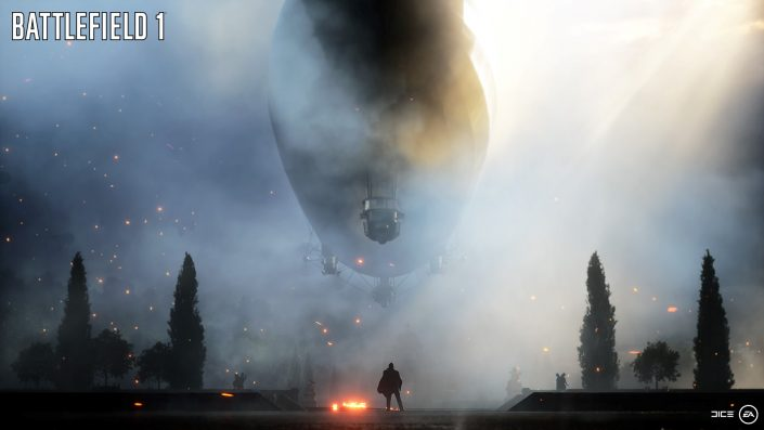 Battlefield 1 (8)