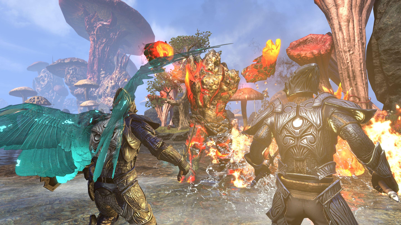 The Elder Scrolls Online Morrowind Warden_ (2)