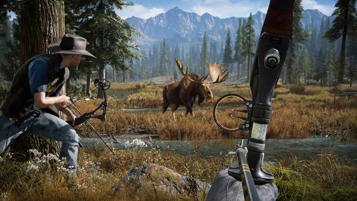 Far Cry 5: Ubisofts erfolgreichster Titel der laufenden Konsolen-Generation