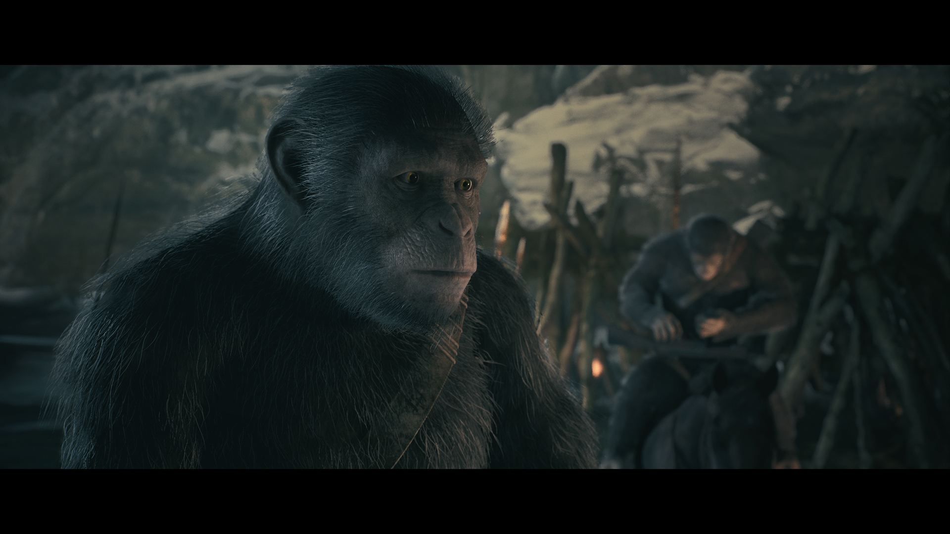 Planet of the apes orgy did not