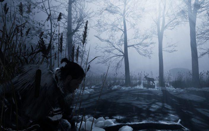 Fade to Silence: Der Releasetermin und weitere Details zum postapokalyptischen Rollenspiel