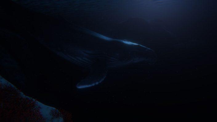 Beyond Blue: Das Unterwasser-Abenteuer hat einen Termin – Neuer Trailer