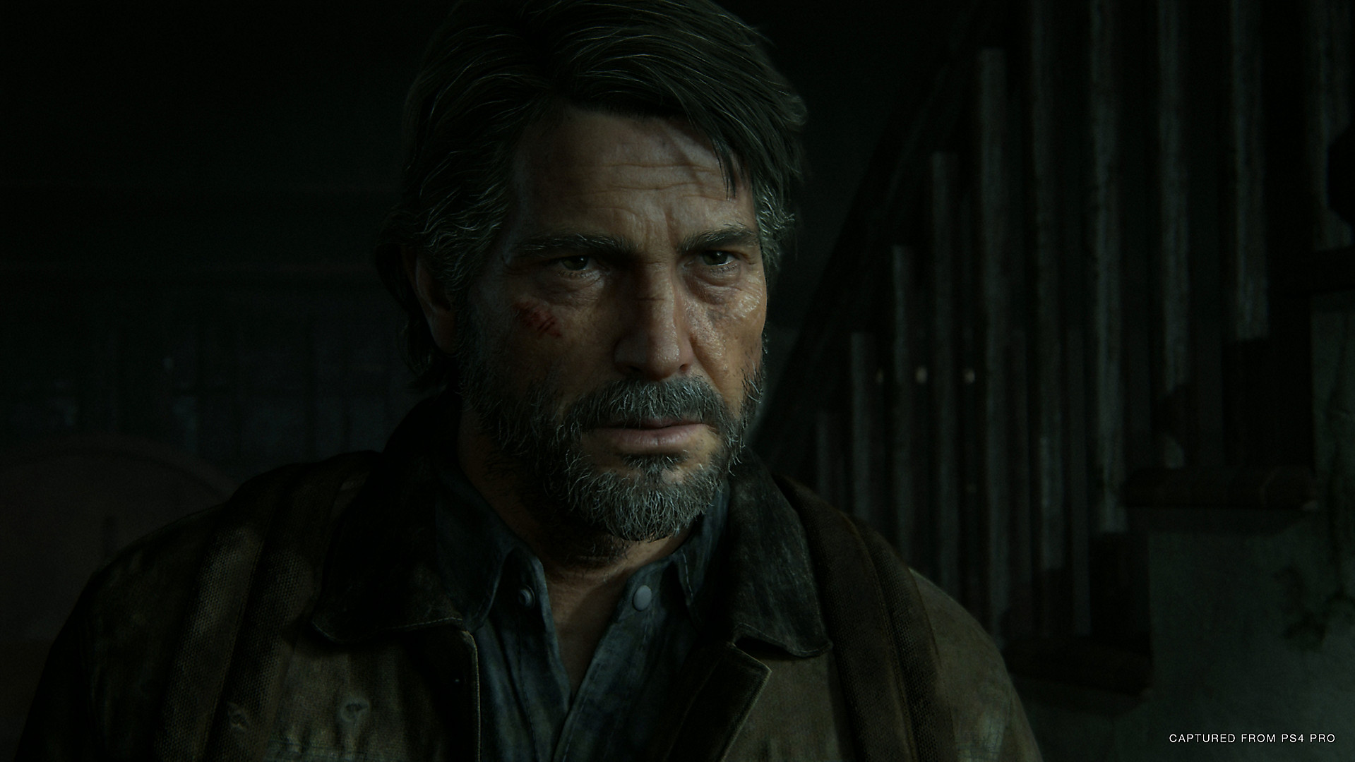 The Last of Us Part 2 (6)