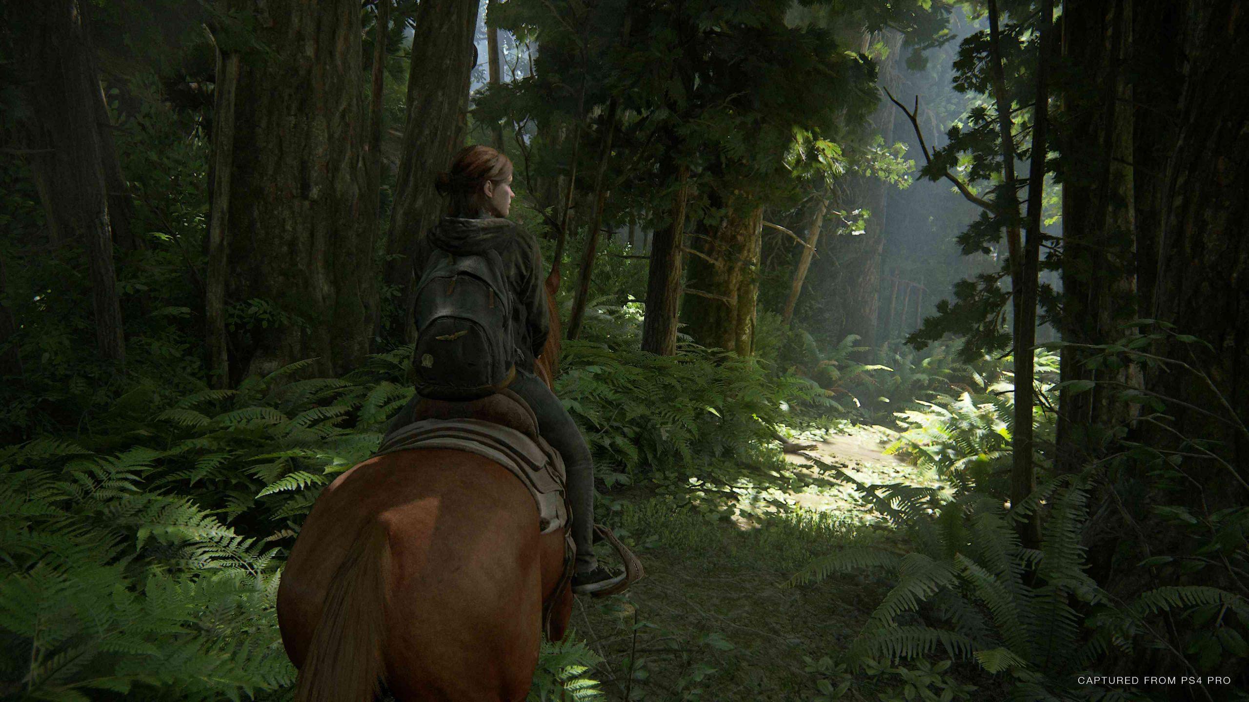The Last of Us Part 2 – Bild 8