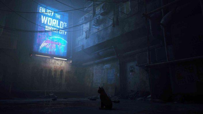 Stray: Der Releasezeitraum und frisches Gameplay zum Abenteuer auf vier Pfoten