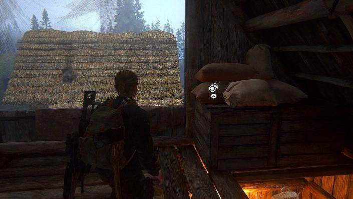 The Last of Us™ Part II_20200614165857