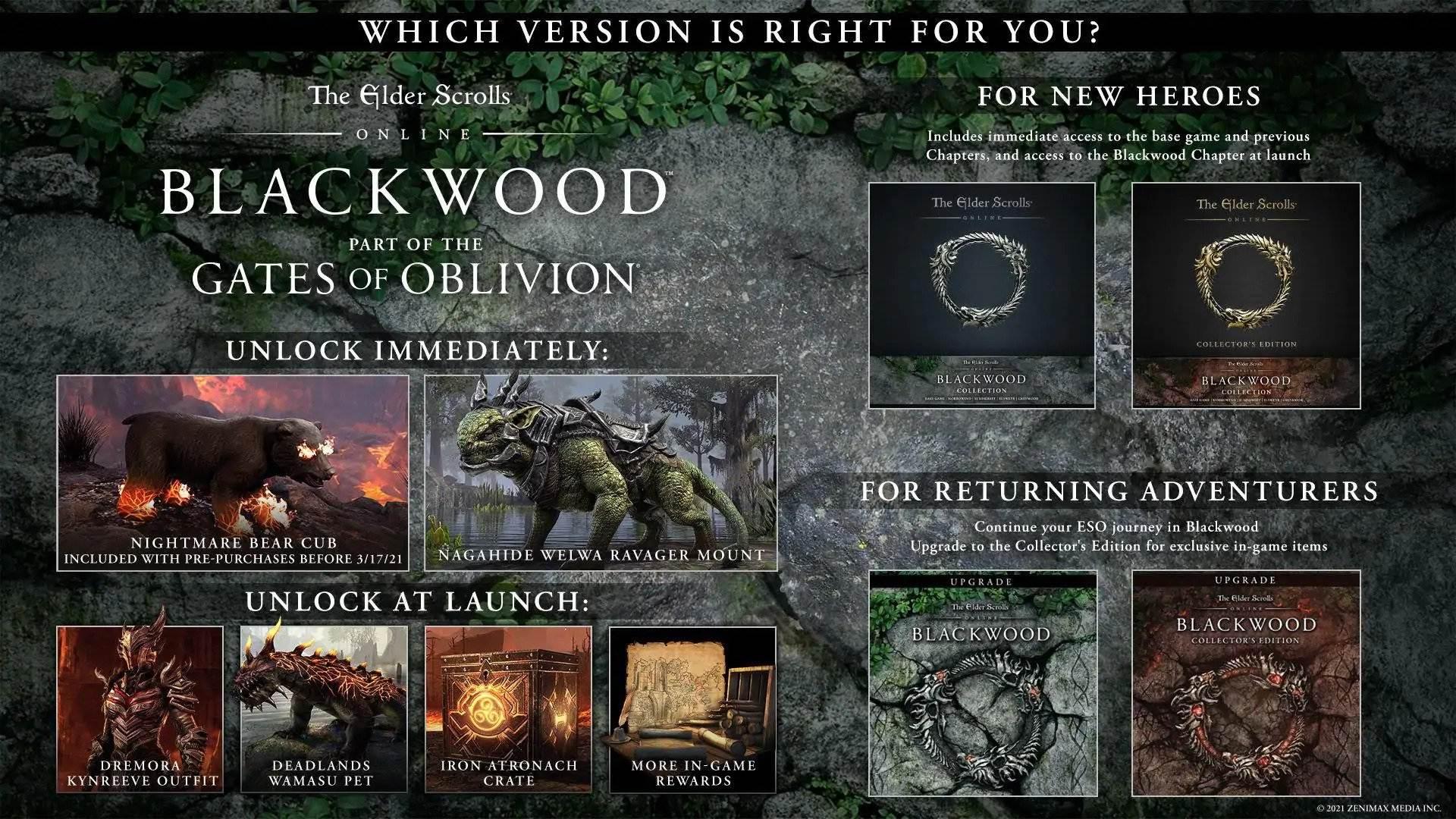The Elder Scrolls Online – Bild 4